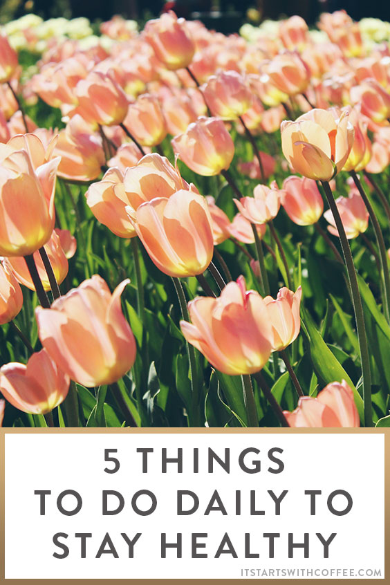 5-things-to-do-daily-to-stay-healthy-o