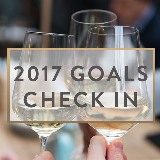 2017 Goals Check In