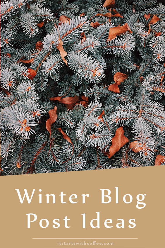 winter blog post ideas