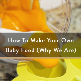 How To Make Your Own Baby Food (Why We Are)
