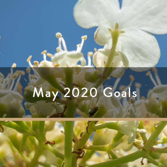 May 2020 Goals