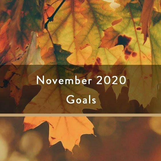 November 2020 Goals