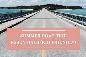 Summer Road Trip Essentials (Kid Friendly)